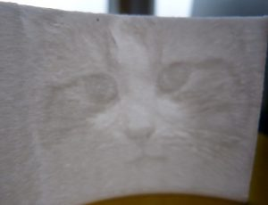 things to make with a 3d printer : lithophane